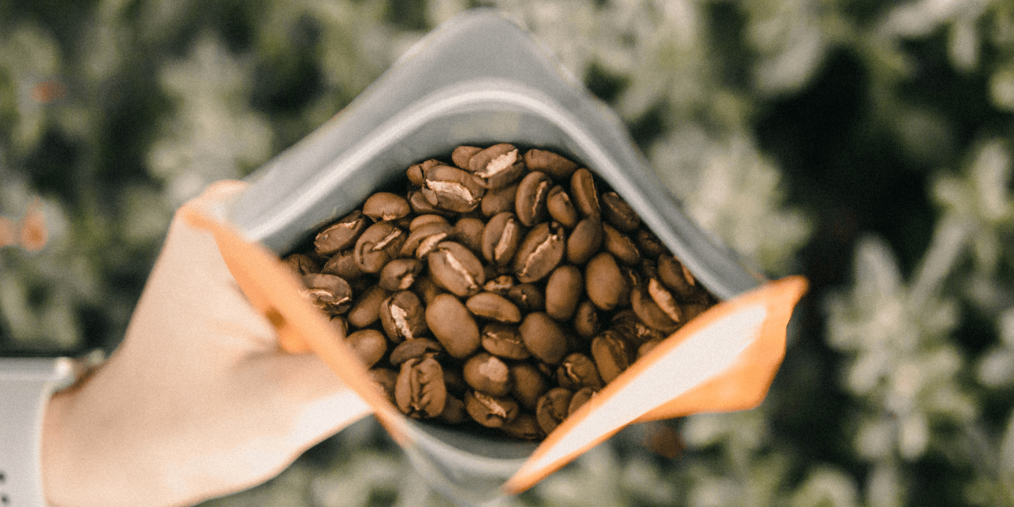 Storing coffee at home